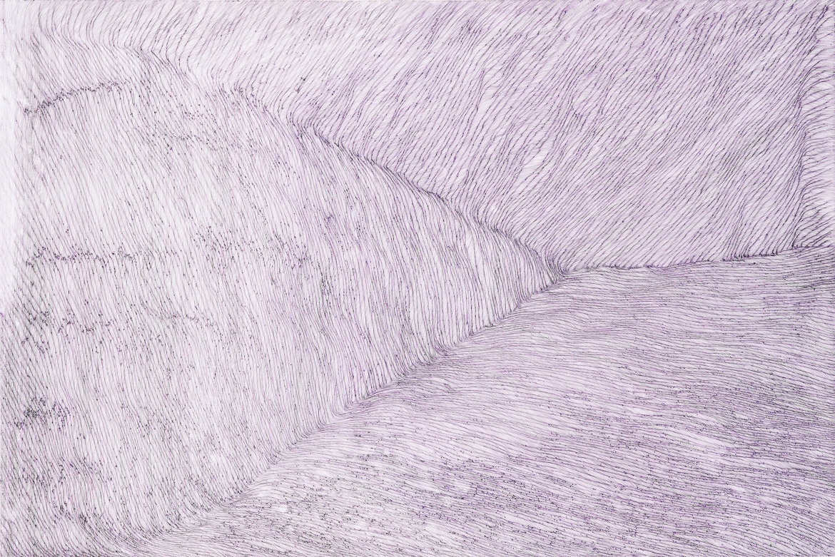Violet past prime,ink on paper, 3ft(w) x 2ft (h), 2011