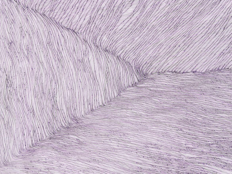 Violet past prime,ink on paper, 3ft(w) x 2ft (h), 2011