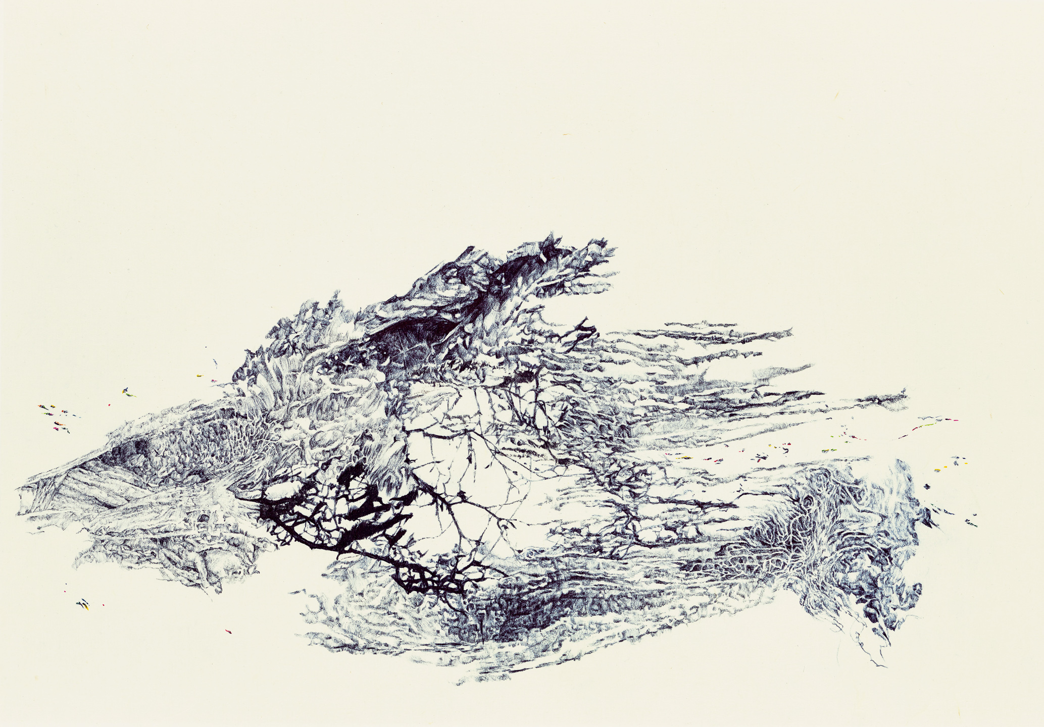 A moment of truth 37, ball pen on paper, 27cm (height) x 38.5cm (width), 2014