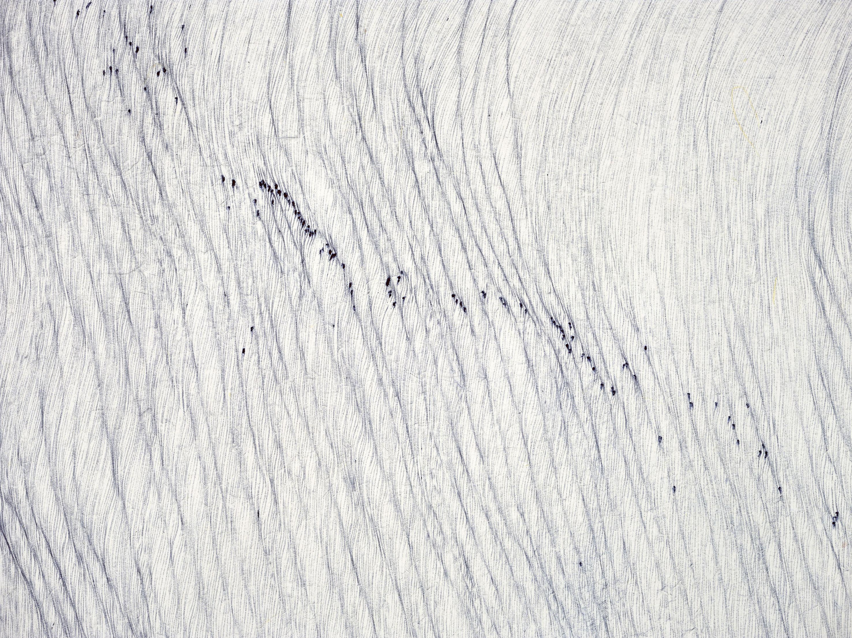 110b-a-rhythm-of-landscape-3-detail-1
